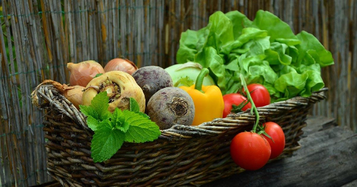 Advies voor zwangeren: wat mag je wel en niet eten?